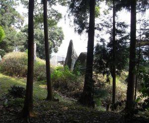 310:上古の庭