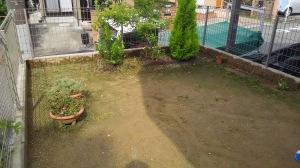 新築のとき手付かずの庭
