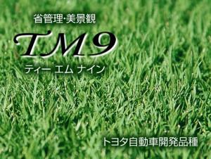 56:TM9