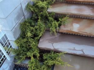 40:階段