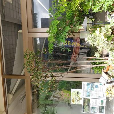 21-10-08-09-56-04-704_photo